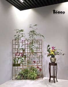 The orchid Exhibition of China 第四届兰花大会展览 - FT_News - Floral Today Ikebana, Oriental Flowers, Floral Artwork, Arte Floral, Flower Wall, Spring Flowers, Flower Designs, Floral Arrangements, Wedding Flowers