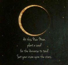 Moon Child: At this new moon plant a seed for the universe to tend. Set your vision on the stars New Moon June, February 22, Moon Plant, Moon Spells, New Moon Rituals, George Carlin, Bulletins, Moon Magic, Lunar Magic