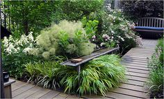 small city garden - Google Search