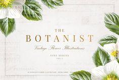 The Botanist - Flowe