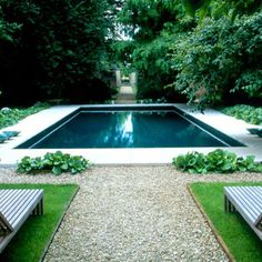 love the plants in the rock, natural yet geometrical, love the sight line going straight past across and beyond the pool