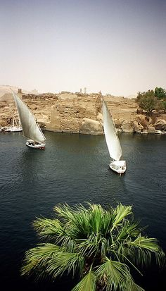 Felluccas on the Nile in Aswan, Egypt