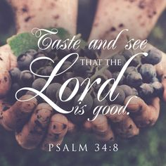 Taste and see that the Lord is good. – Psalm 34:8