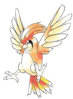 #pidgeotto #pokemon #anime #pocketmonsters