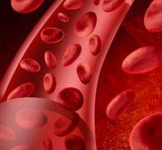 14 Alimentos que purificam o sangue