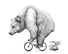 amy dover - awesome bear on a teeny tiny bicycle, pulling a rabbit