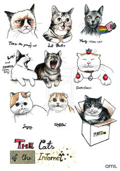 Famous Cats of the Internet by frikibunny8 @ deviantart. Featuring Tarder Sauce, Nyan Cat, Maru, and Snoopy Cat!