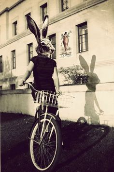 I love the strange creepiness of this picture. Photo Collage Bunny on Bicycle Rabbit Head by ellemoss Animal Masks, Animal Heads, Photomontage, Pale Tumblr, Rabbit Head, Image Digital, Strange Photos, Funny Bunnies, Pics Art