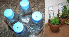 Comment construire un système d'auto-irrigation pour l'été: Voulez-vous assurer…