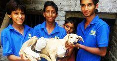"""I Guardiani dei """"Senza Voce"""", i bambini indiani che aiutano e curano i cani randagi"""