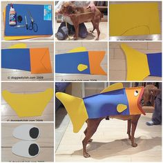 How to turn your dog into a fish for halloween fish dog and costumes how to make fish halloween costume for dog step by step diy tutorial instructions how solutioingenieria Choice Image