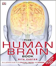 A Uconn Study Of How Human Brain Reads >> 21 Best Qualitative Research Images Exploring Research Science