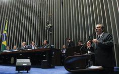 O senador Armando Monteiro(PTB-PE) discursa na sessão da votação do processo de impeachment da presidente Dilma no Senado, em Brasília