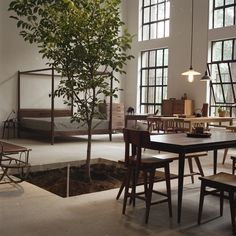 dont really know how much I would like aa random tree in my house...? plus everything around it would always be dirty. but neat idea?