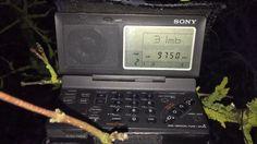 Sony ICF-SW100: NHK World Radio Japan 9750 kHz, first catch on this mini...