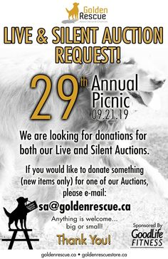 Save the date and get ready to load up the car and your Goldens for an action-packed day at the majestic Viamede Resort ~ nature's paradise in the Kawarthas. Golden Events, Silent Auction, New Item, Picnic, Big, September, 30th Anniversary, 21st, Exciting News