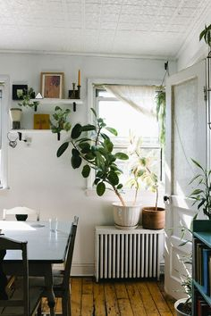 small shelves to keep botanicals warm and close to the sun