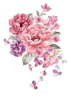 Pintura de Flores cor de Rosa, Flores De Material, Aquarela De Flores, Flores Cor De Rosa PNG Imagem e Clipart