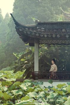 A pavilion, a lotus pond and a girl in traditional Chinese attire Ancient Chinese Architecture, Japanese Architecture, Chinese Garden, Chinese Art, Chinese Culture, Japanese Culture, China Travel, Japan Travel, Japan Kultur