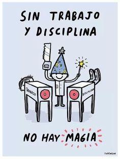 Trabajo y disciplina= magia