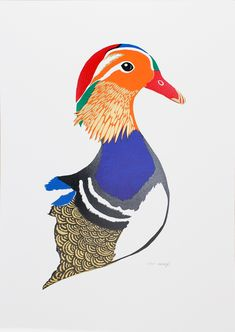 Rosa-Doyle---Mandarin-Duck