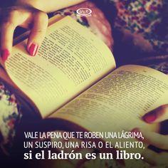 LasDerrapadoras (@LasDerrapadoras) | Twitter