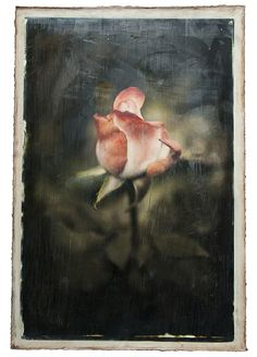 encaustic photos so gorgeous the wax overlay makes it look so romantic I want to try doing this I take so many pics anyways