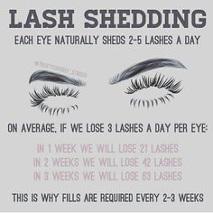 Lash shedding is the reason you should be maintaining your lashes with refills every 2-3 weeks. You must have 40% of your lashes remaining…