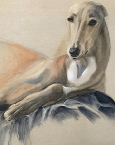 """""""Gala"""",the queen Acrylic on canvas ,natural size  painted by lucillabollati.com #greyhounds#art#dogs"""