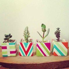 Cactil Cactus Land  Pintada a mano  Bogotá, Colombia