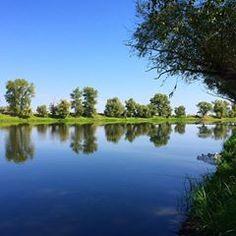 Спасибо коллегам за тёплую компанию! Выехали на рыбалку с @sc_volgograd Большое спасибо организаторам. Невероятно красивое и тихое место❤️ #aysel_bandalieva #vlg #brsvmeste #русскийстандарт #мывместе