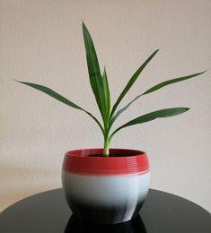 Vasen und Töpfe - Roboprint Vase, Planter Pots, Plants, Jars, Vases, Jar