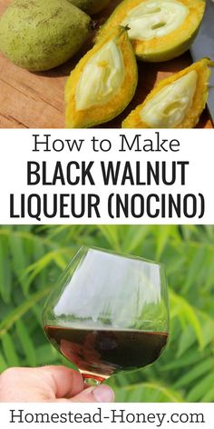 Nocino is a liqueur that is made from immature (green) black walnuts. This homem… Nocino is a liqueur that is made from immature (green) black walnuts. This homemade black walnut liqueur recipe will teach. Homemade Alcohol, Homemade Liquor, Homemade Liqueur Recipes, Triple Sec, Kombucha, Cocktail Gin, Homemade Black, Kefir, Alcohol Recipes