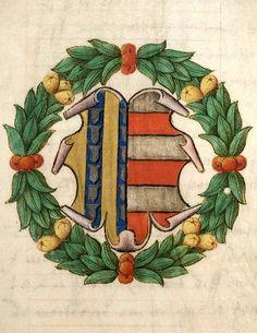"""François de Langeac, actif en 1536-1544. Il a succédé à son père comme bailli des hautes montagnes d'Auvergne. Capitaine d'homme d'armes, il commanda le ban et l'arrière ban sous le maréchal de Saint-André. -- L'écu est parti de Langeac et de Polignac, famille de l'épouse de François de Langeac : """"mi-parti : au 1, d'or à trois pals de vair, et au 2, fascé d'argent et de gueules de six pièces""""."""