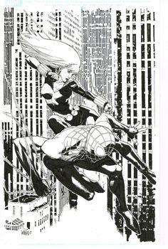 Spider-Man and Black Widow by Leinil Yu