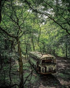 I wanna move here. Abandoned Buildings, Abandoned Property, Abandoned Train, Abandoned Mansions, Abandoned Houses, Abandoned Vehicles, Old Buildings, Derelict Places, Abandoned Places