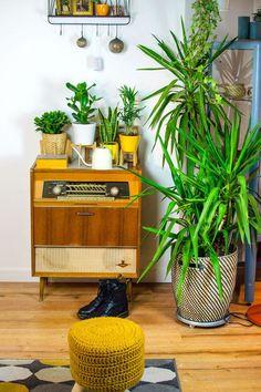 [beinhaltet unbezahlte werbung] Wie setze ich meine Zimmerpflanzen toll in Szene? Plant Styling Inspirationen für deinen Urban Jungle! Bohemian Living mit Scandi und Vintage Midcentury Elementen. #urbanjungle #jungalow #plants #pflanzen #zimmerpflanzen #plantbox #indoorplants #interiortips #homedecor #boho #scandiboho #vintage #midcenrtury
