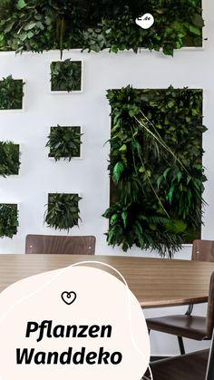 Das Urban Jungle Feeling mit Pflanzen Wanddeko in Dein Zuhause zu bringen, geht ganz einfach. Wir zeigen Dir Ideen für eine Plant Wall und unsere Pflanzenbilder-Favoriten. Plant Leaves, Industrial, Houses, Bedroom, Plants, Enterprise Architecture, Small Trees, Allotment, Planting