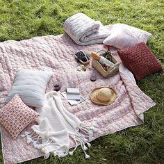 a picnic