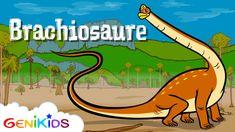 Le Brachiosaure, Le dictionnaire sur les dinosaures Verb Conjugation, Idioms, Social Studies, Kids Learning, Audio Books, Vocabulary, Kindergarten, Preschool, Language