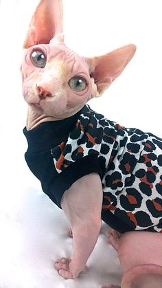 Safari Sphynx Cat Clothes Please message for by TheSpoiledSphynx