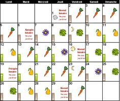 Magazine Petit Jardin N°116 - Septembre 2016 - Jardinage, plantes et fleurs