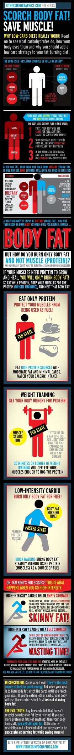 Eat STOP Eat - Scorch Body Fat, Save Muscle Infographic: How bodies burn fat, what/when to train/eat - In Just One Day This Simple Strategy Frees You From Complicated Diet Rules - And Eliminates Rebound Weight Gain Fat Loss Diet, Weight Loss Diet Plan, Weight Loss Tips, Losing Weight, Weight Gain, Loose Weight, Nutrition Crossfit, Sport Nutrition, Nutrition Plate