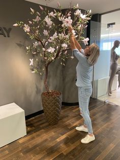 HQ Betty Barclay World Fashion Center Tree Branch Decor, Tree Branches, Tree Branch Centerpieces, Manzanita Branches, Diy Home Crafts, Diy Home Decor, Room Decor, Salon Interior Design, Salon Design