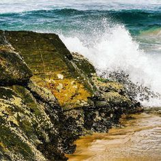 Waves crash on rocks. #igersgoldcoast #currumbinbeach #visitgoldcoast #ig_australia #icu_aussies #loveyouqueensland #brisbanephotographer #discoverqueensland #igersaustralia #beach #wow_australia #wanderaustralia #waves by winterof72 http://ift.tt/1X9mXhV
