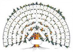 GéniWal - Généalogie - L'arbre GéniWal 7 générations couleurs