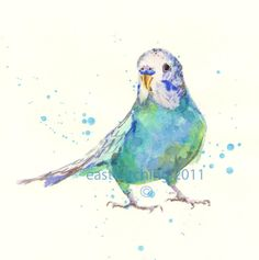 Watercolor Budgie Print budgie painting por eastwitching en Etsy