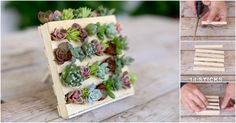I love gardening projects, especially those that involve making creative planters. Last year I had a fun time making strawberry pallet planters, and this whimsical terracotta pot project blew my mind. Succulent Arrangements, Succulents Garden, Succulent Ideas, Popsicle Stick Diy, Pallets Garden, Pallet Gardening, Fairy Garden Accessories, Cactus Y Suculentas, Popsicles