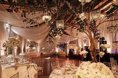 two trees with dark green leaves placed in venue. Have either hanging lanterns or fairy lights