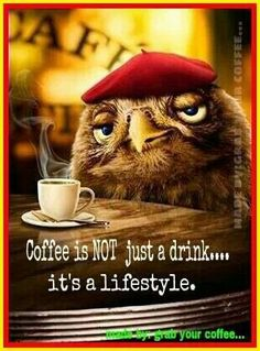Coffee is not just a drink... it's a lifestyle. Created from Espresso Owl Card by Avanti Cards